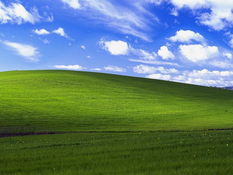 Microsoft Harus Bayar Rp1,3 Miliar untuk Wallpaper Windows XP