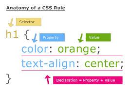 Jenis – Jenis Selector Pada CSS